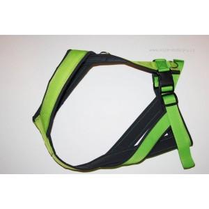 """Geschirre """"DAVID"""" - L1 / green+grau"""